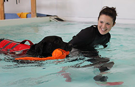 Canine Hydrotherapy York